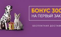 Бонус 300 рублей