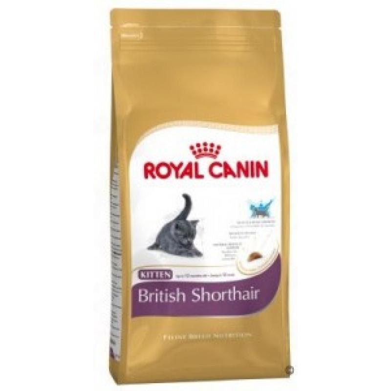 Royal Canin Kitten British Shorthair  Корм для Британских короткошерстных котят с 4 до 12 месяцев