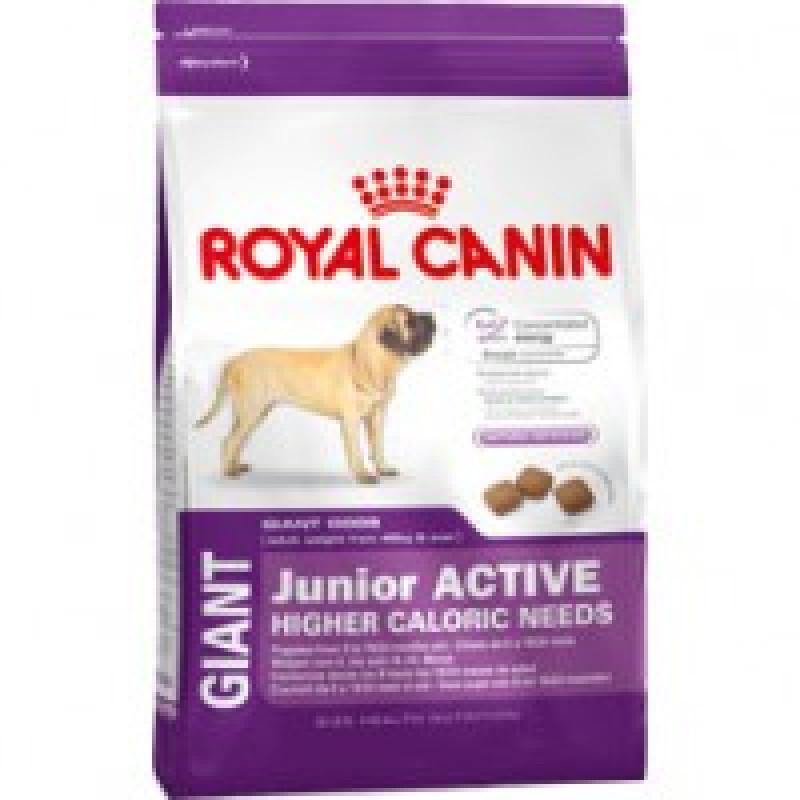 Royal Canin Giant Junior Active Корм для щенков с высокими энергетическими потребностями с 8 до 18/24 месяцев 15кг