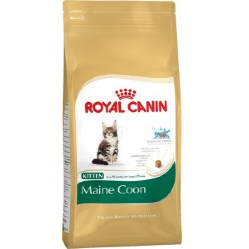 Royal Canin Kitten Maine Coon 36 Корм для котят породы Мейн Кун и других крупных пород