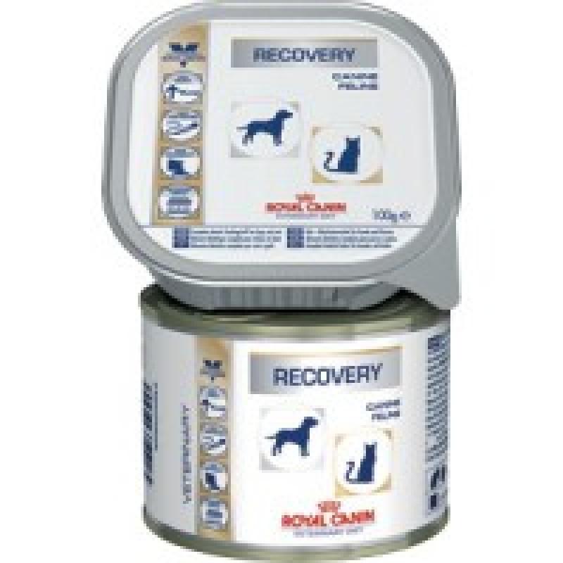 RC Recovery Диета для собак и кошек в период  выздоровления