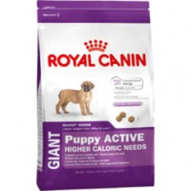 Royal Canin Giant Puppy д/щенков гигантских пород от 2 до 8 мес