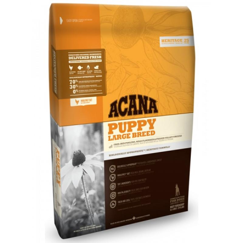 Acana Puppy Large Breed Корм для щенков крупных пород 13кг