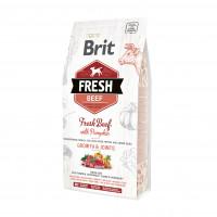 Brit Fresh Beef With Pumpkin Puppy Large Growth & Joints  корм со свежей говядиной и тыквой для щенков крупных пород